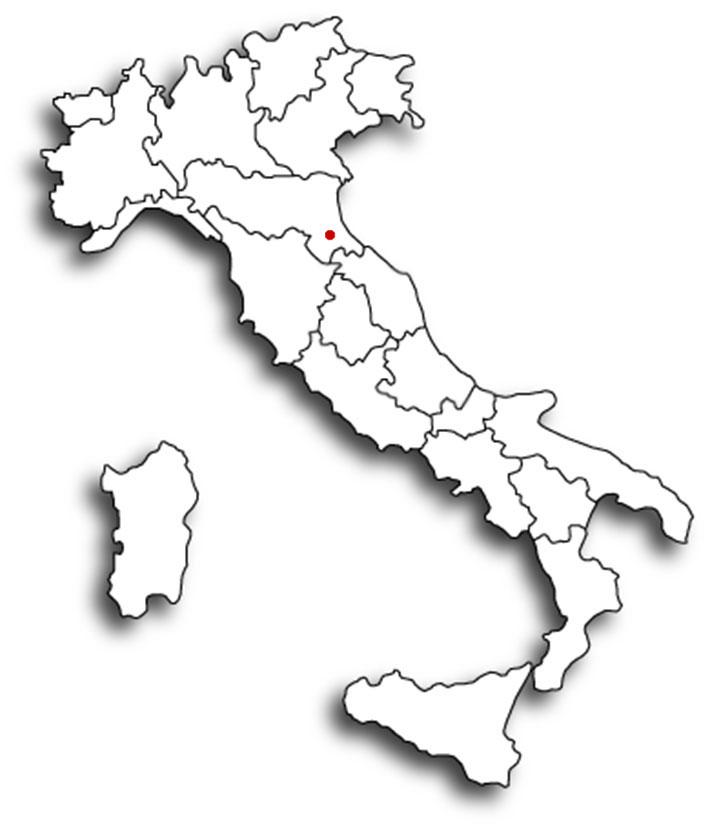 Cartina Muta Dell Italia Politica.Pascucci Tele Stampate A Mano Di Romagna
